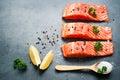 Fillet of salmon Royalty Free Stock Photo