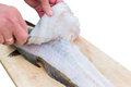 Filleting Fish Royalty Free Stock Photo