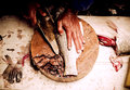 Filleting a fish cut on the table Royalty Free Stock Photo