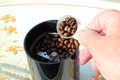 Filling a grinder with coffee beans hand an electric to prepare them for making cup of Royalty Free Stock Images