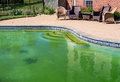 Filthy backyard swimming pool and patio back yard behind modern single family home at opening with green stagnant algae filled Stock Photography