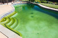 Filthy backyard swimming pool and patio back yard behind modern single family home at opening with green stagnant algae filled Royalty Free Stock Photography