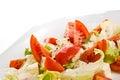 Fim italiano do salad- de Caprese acima Foto de Stock Royalty Free