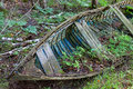 Final harbor at its a broken down old vessel slowly disintegrates on the forest floor once providing its sailors safe passage Stock Image