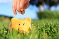 Financial concept baby hand and piggybank over nature background Stock Image