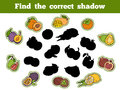Find the correct shadow fruits education game for children Stock Photo
