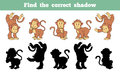 Find the correct shadow monkey game for children Stock Images
