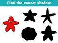 Find the correct shadow (sea stars) Royalty Free Stock Photo