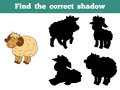 Find the correct shadow sheep family game for children Stock Photography