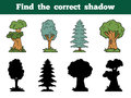 Find the correct shadow trees education game for children Royalty Free Stock Images