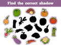 Find the correct shadow vegetables education game for children Royalty Free Stock Image