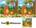Find differences (bears family) Royalty Free Stock Photo