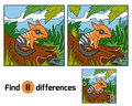 Find differences, Numbat