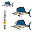 Find differences, Sailfish Royalty Free Stock Photo