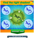 Find right shadow lizard on a meadow Royalty Free Stock Photo