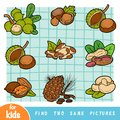 Find two the same pictures, education game. Colorful set of nuts