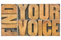 Find your voice creativity concept isolated word abstract in letterpress wood type Royalty Free Stock Photo