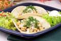 Fine gourmet tacos Royalty Free Stock Photo