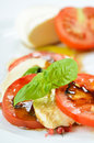Fine salad of tomato and mozzarella Royalty Free Stock Photography