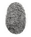 Finger Print Royalty Free Stock Photo