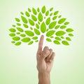 Finger tree Royalty Free Stock Photo