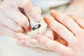 Fingernail care. manicure nail polish beauty procedure Royalty Free Stock Photo