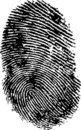 FingerPrint 1 Royalty Free Stock Photo