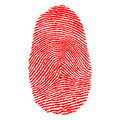 Fingerprints Royalty Free Stock Image