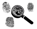 Fingerprints fingerprint magnifier on a white background Stock Images