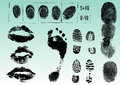 Fingerprints footprints and lips 2 Stock Images