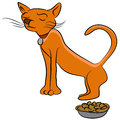 Finicky cat an image of a who doesnt like his food Royalty Free Stock Photography