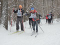 Almost at the finish line voronezh russia february finishing spurt of skiers do race on track ski track of russia a distance of km Stock Photography