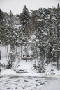 Finland natur i vinter rusk landskap northern europe Royaltyfria Foton