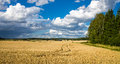 Finnish Countryside Royalty Free Stock Photo
