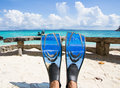 Fins or flippers on the sea Royalty Free Stock Images