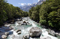 Fiordland new zealand landscape of cleddau river in Stock Photo