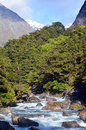 Fiordland new zealand landscape of hollyford river in Royalty Free Stock Photography