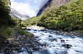 Fiordland new zealand landscape of hollyford river in Stock Photos