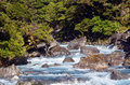 Fiordland new zealand landscape of hollyford river in Stock Images