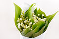 Fiori del Lily-of-the-valley Fotografie Stock Libere da Diritti