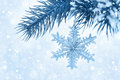 Fir branch with christmas decoration on blue background bokeh a horizontal Royalty Free Stock Photo