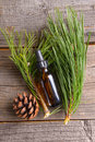 Fir oil bottle of essential on wooden board Royalty Free Stock Photography