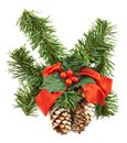Fir tree branch christmas decoration isolated over white background Royalty Free Stock Photos