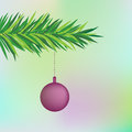 Fir tree branch decoration Stock Images