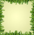 Fir tree branches frame Royalty Free Stock Photo