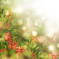 Fir Tree Over Bright Background Stock Photo