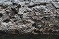 Fir tree texture closeup details of bark Stock Image