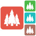 Fir Trees forest icon