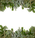 Fir twig frame Royalty Free Stock Photos