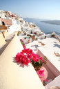 Fira santorini greece town island Royalty Free Stock Photo